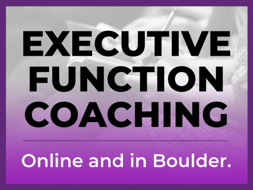executive-function-coaching-icon-final-v2