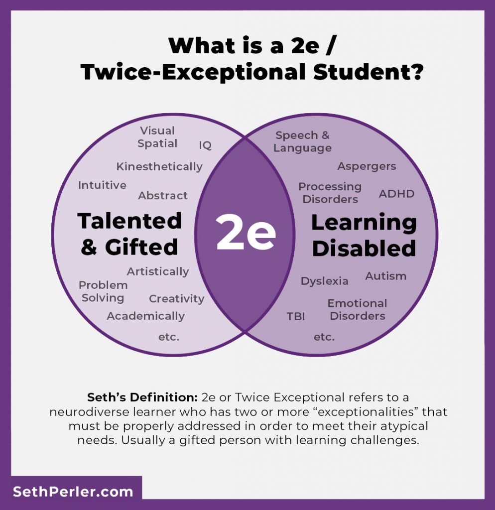 Is My Child 2e Or Twice Exceptional